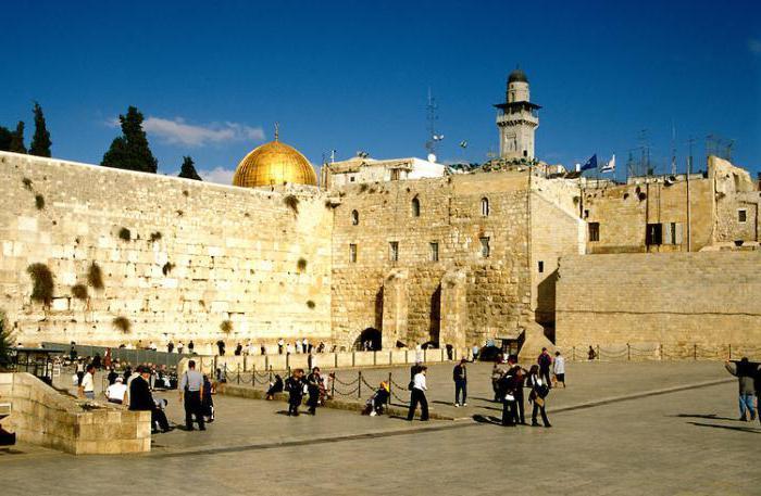 поездки в израиль для знакомства