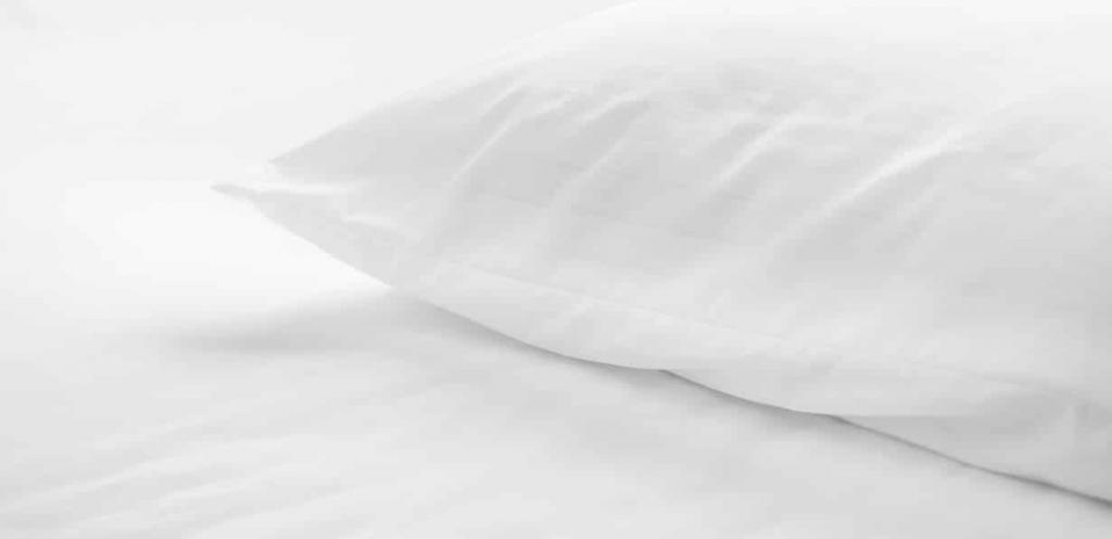 Dry cleaning of down pillows