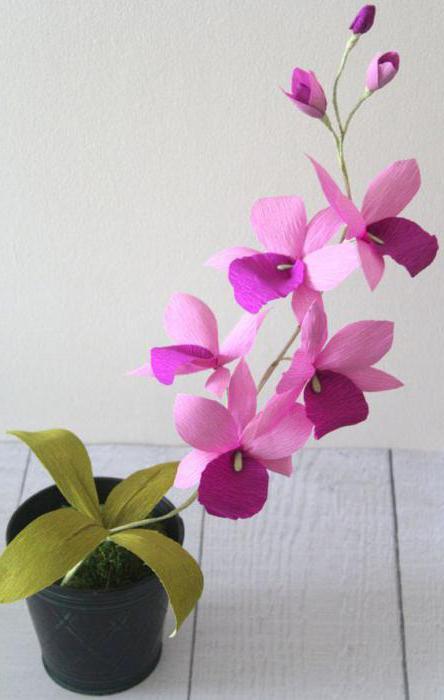 Орхидея из бумаги гофрированной