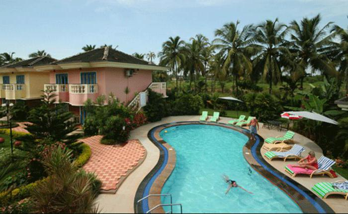 coconut grove beach resort 4 отзывы