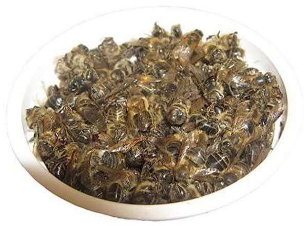 пчелиный подмор лечение рецепты применение