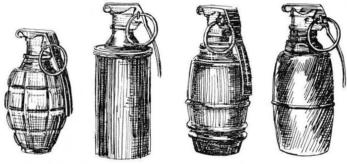 Рисунки гранаты карандашом