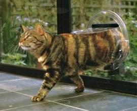 Сделать лаз для кошки в двери