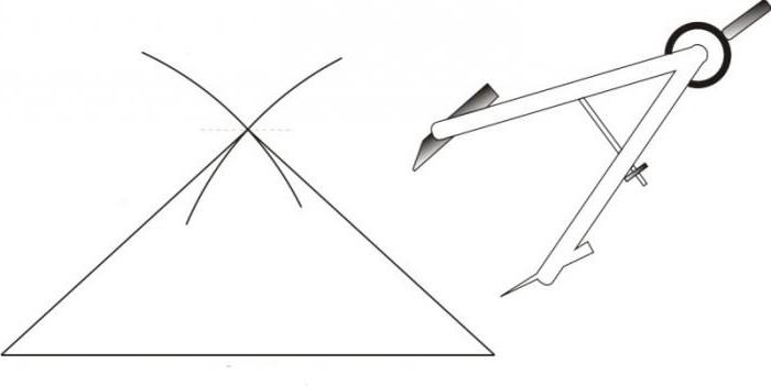 Бюстгальтер, выкройка: снятие мерок, построение основы
