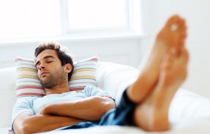 лучшее время для сна человека