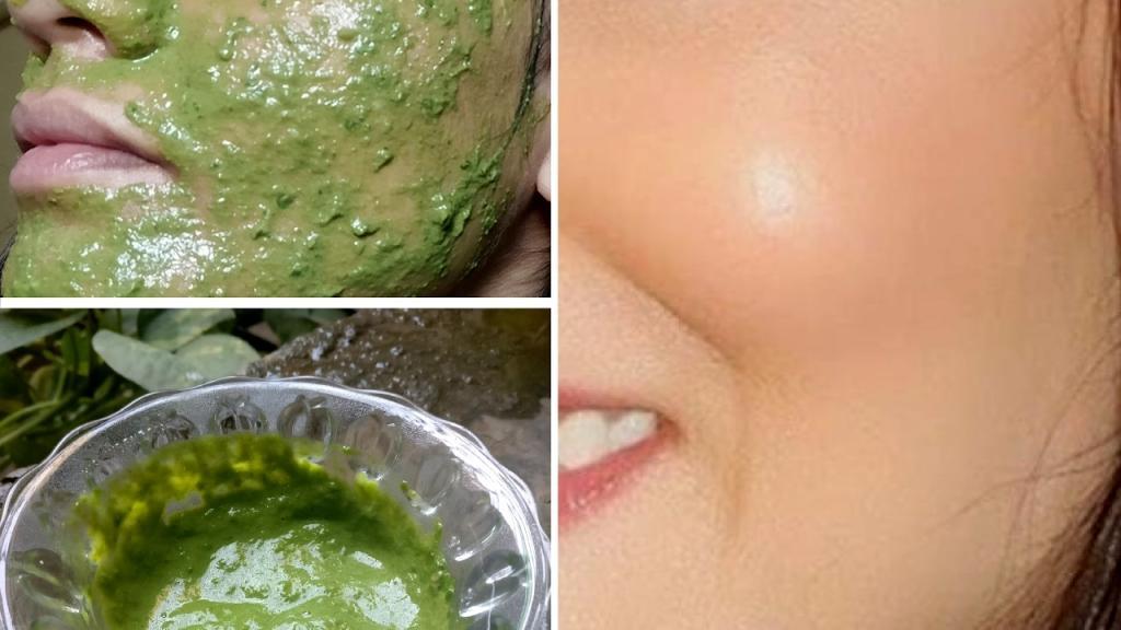 Шпинат: состав витаминов и микроэлементов, пищевая ценность