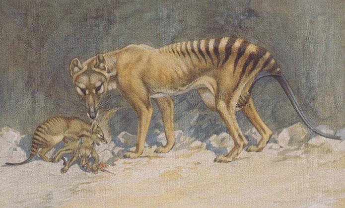 вымершие животные с картинками далее ментоняшка