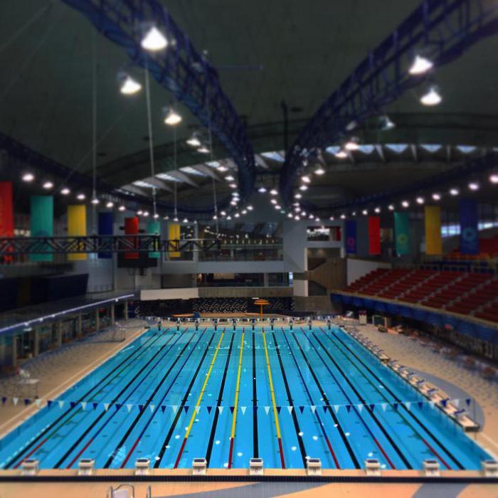 Программа тренировок по плаванию на увеличение скорости