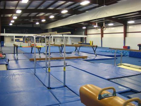 Тренировка по силовой гимнастике