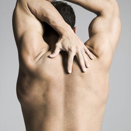 Какие группы мышц работают при плавании