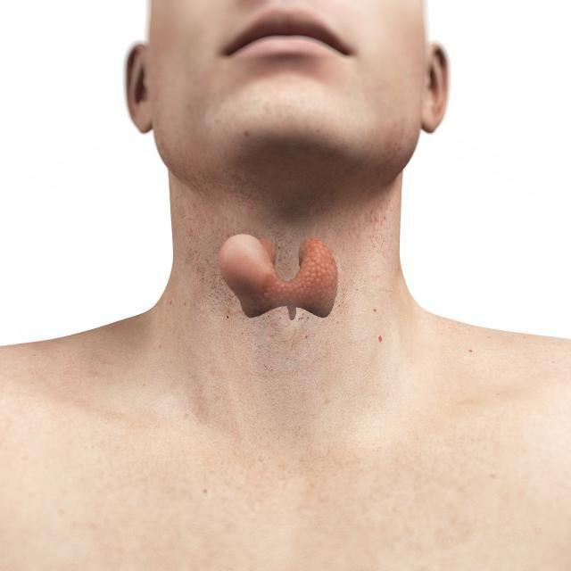 Какого размера узлы на щитовидной железе опасны