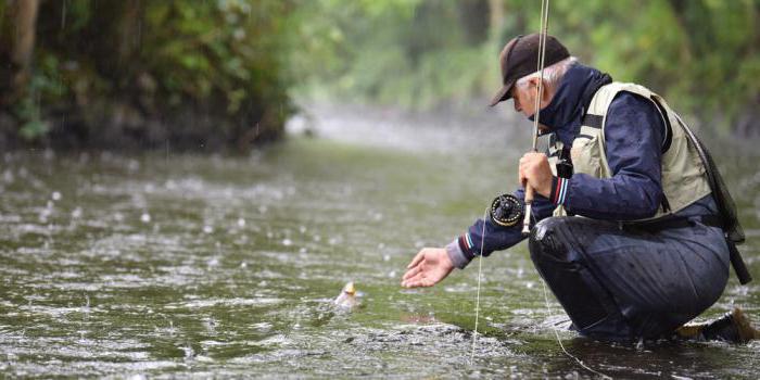 клюет ли рыба в дождь на реках