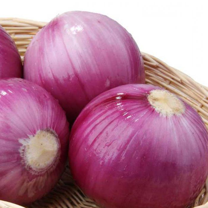 лук фиолетовый сорта