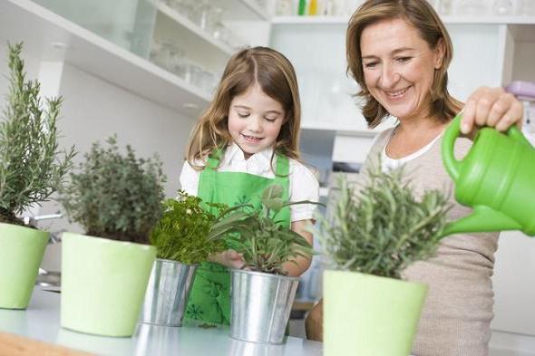 можно ли поливать цветы перекисью водорода