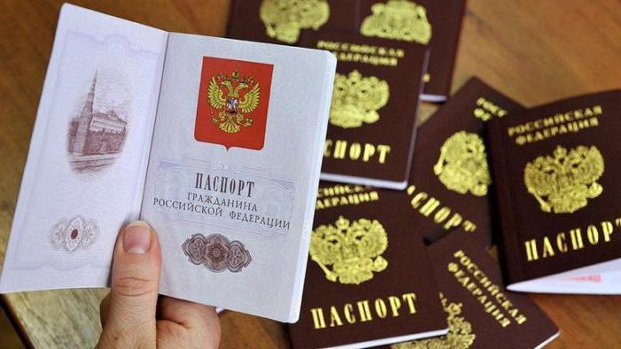 Проверка подлинности паспорта гражданина РФ - где и как проверить документы