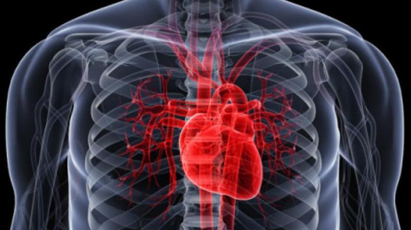 как восстановить ритм сердца в домашних