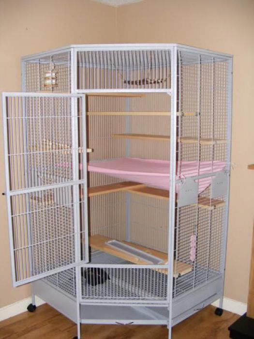 Клетка для шиншиллы своими руками в домашних условиях фото 491