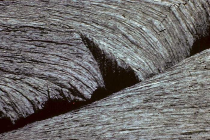 зоны спрединга и субдукции