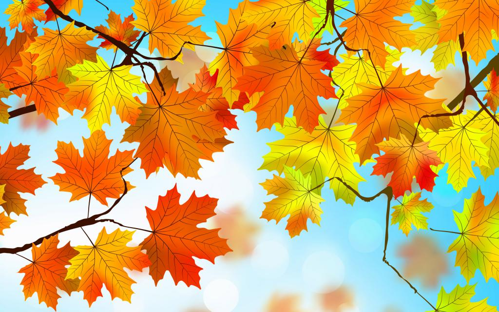 Картинка про праздник осени
