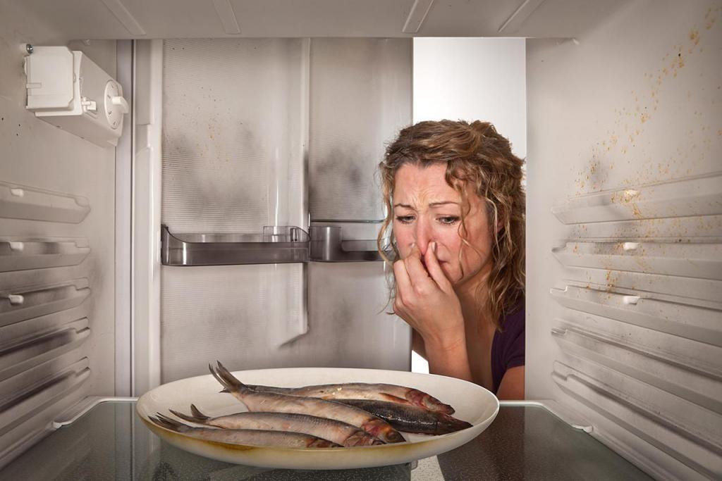 how to remove the smell of fish from the refrigerator