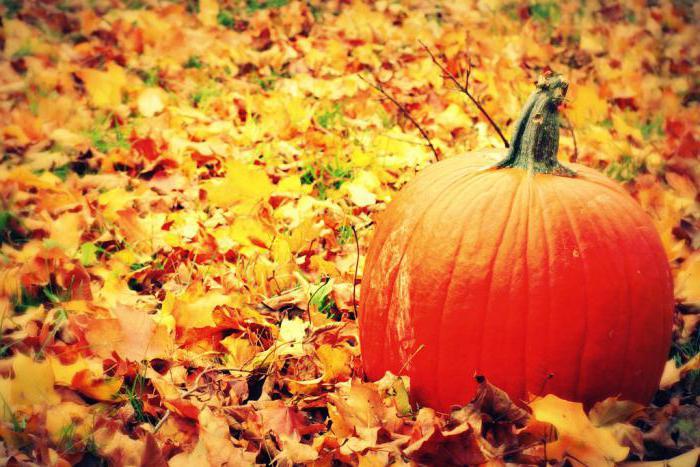 Загадки про октябрь месяц