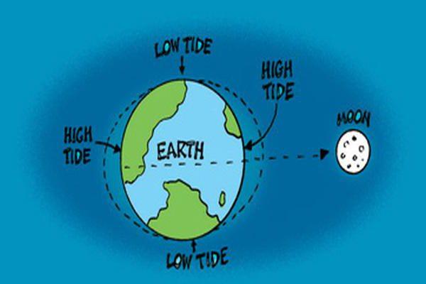 Что вызывает приливы и отливы
