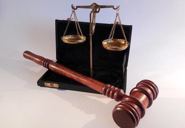 анализ лексики судебных систем россии и германии