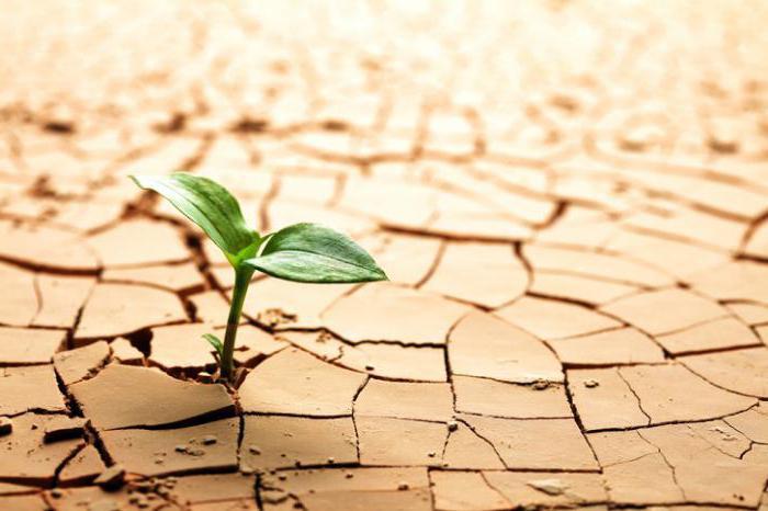 зоны чрезвычайных экологических бедствий