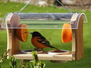 Оригинальные кормушки для птиц своими руками