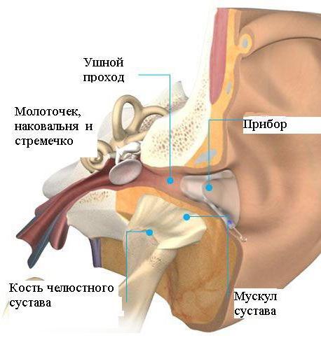 Артрит височно-нижнечелюстного сустава симптомы и лечение