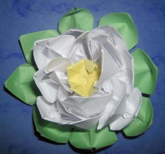 1813663 Объемная водяная лилия из бумаги для детей и цветы в той же технике своими руками. Как сделать своими руками кувшинки из бумаги