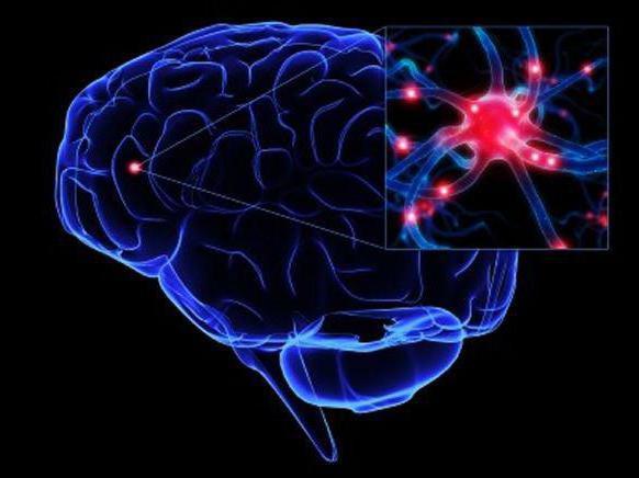 профессии эпилептиков