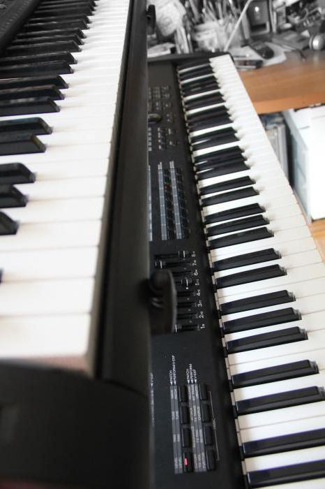 casio ctk 3000 отзывы