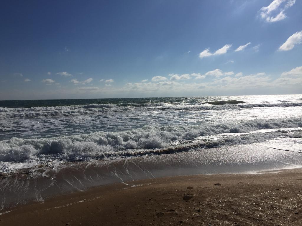 Секс на золотом пляже в хижине робинзона