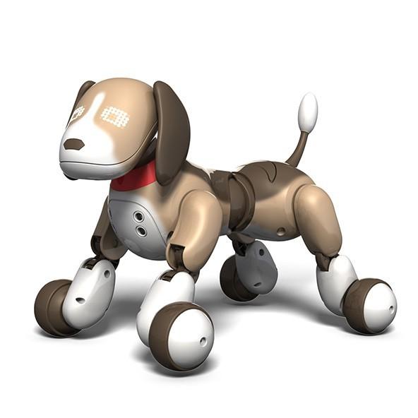 Чичилав собачки  купить в интернет магазине с доставкой в