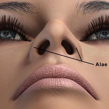 физиогномика широкий нос