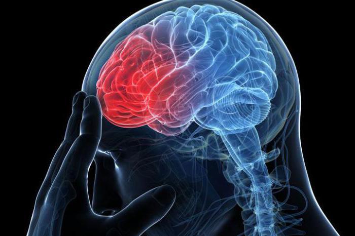 Влияние высокого атмосферного давления на сосуды головы