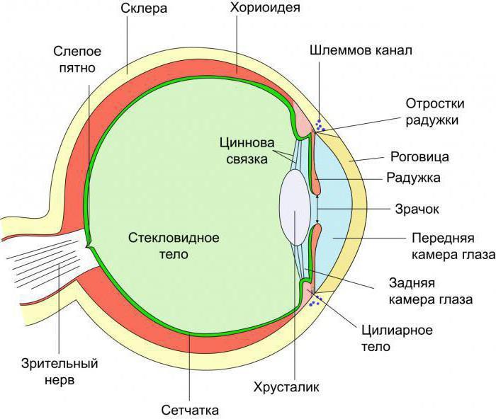 Фильм  Википедия