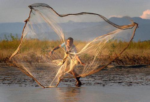 К чему снится ловля рыбы на сеть