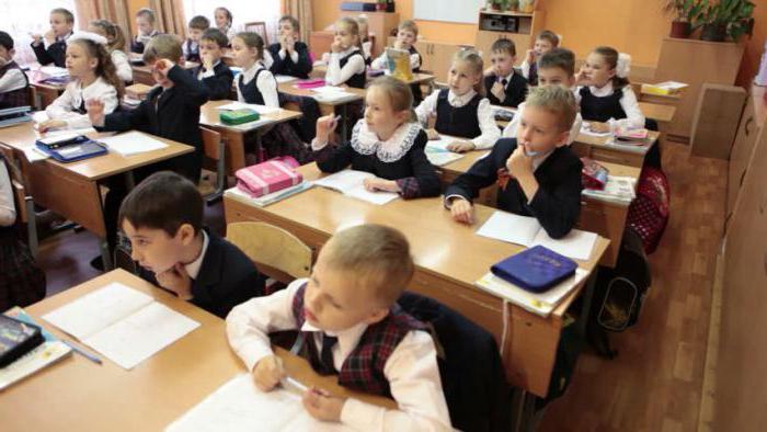 В какую смену должны учиться 2 3 класс