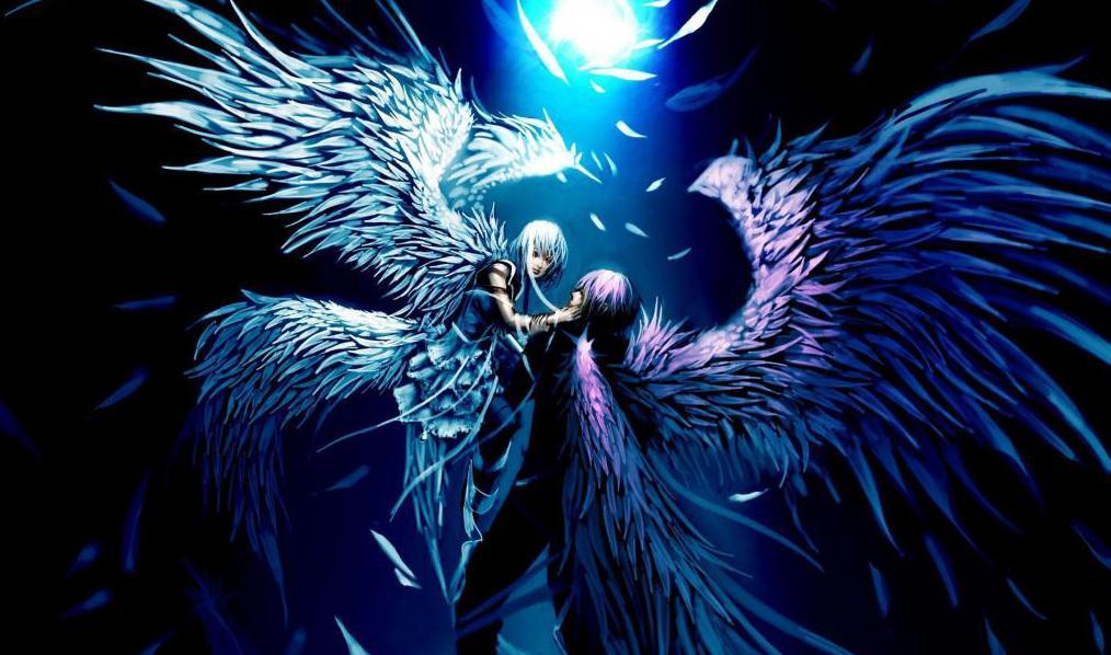 свет луны и крылья