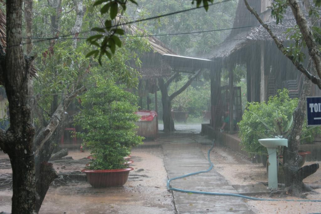 The temperature in Vietnam is now