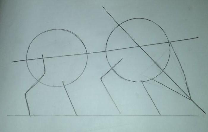 как нарисовать кабана поэтапно