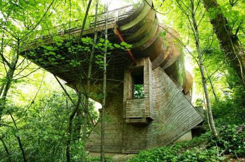 Organic architecture. Frank Lloyd Wright. Fallingwater