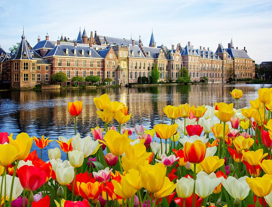 лучшими голландия интересные факты фото образование государства