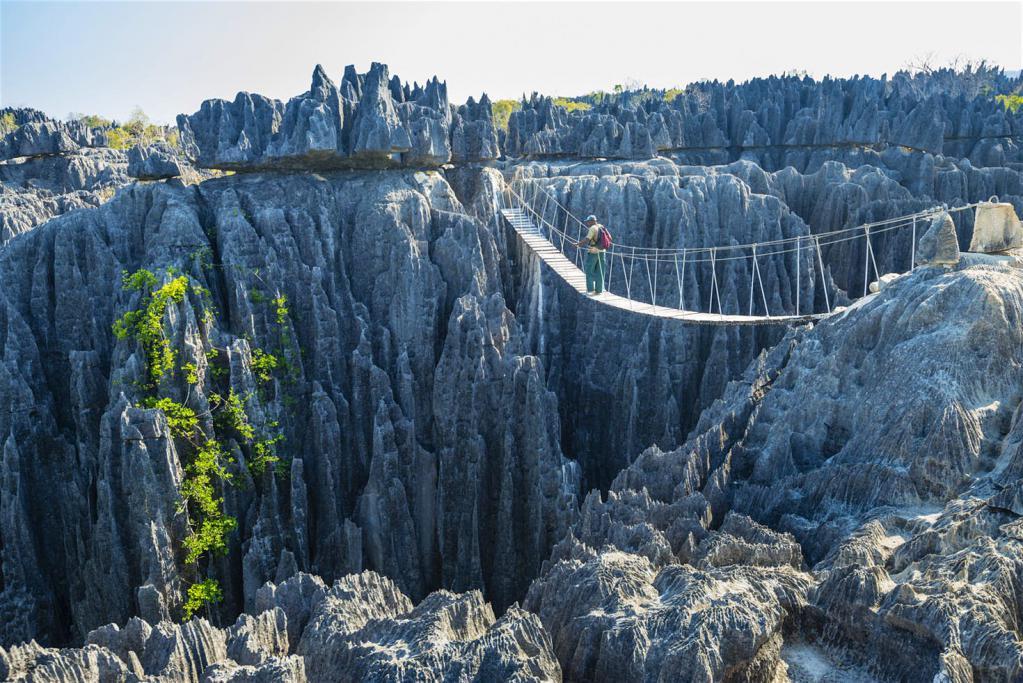 Мост над каменным лесом на мадагаскаре фото