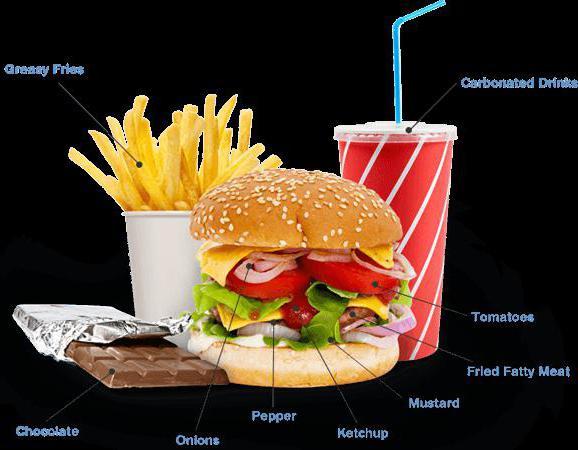 продукты вызывающие холестерин в крови