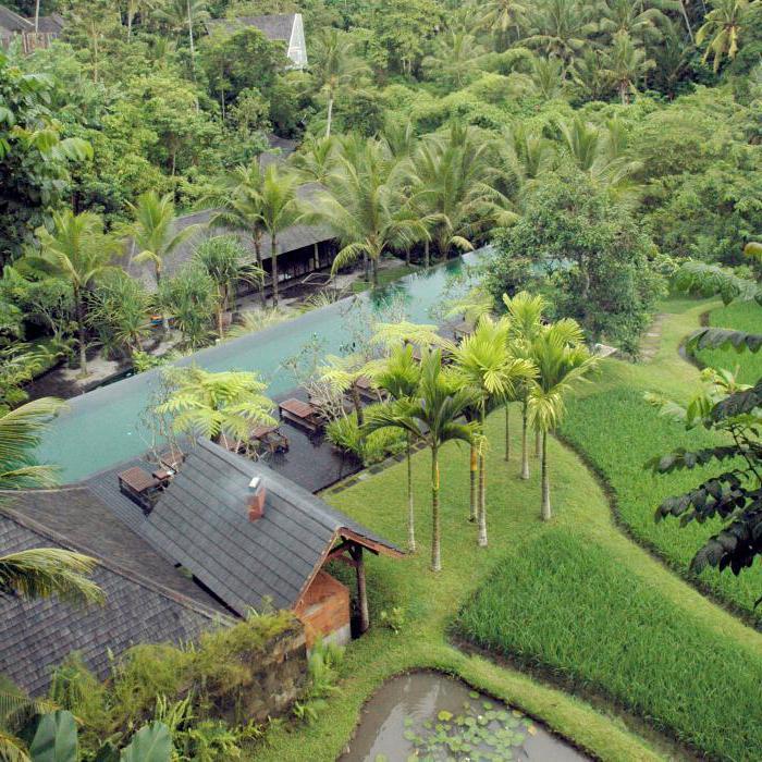 Где лучше отдыхать с детьми на Бали