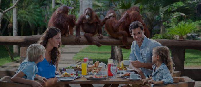 Остров Бали: где лучше отдыхать