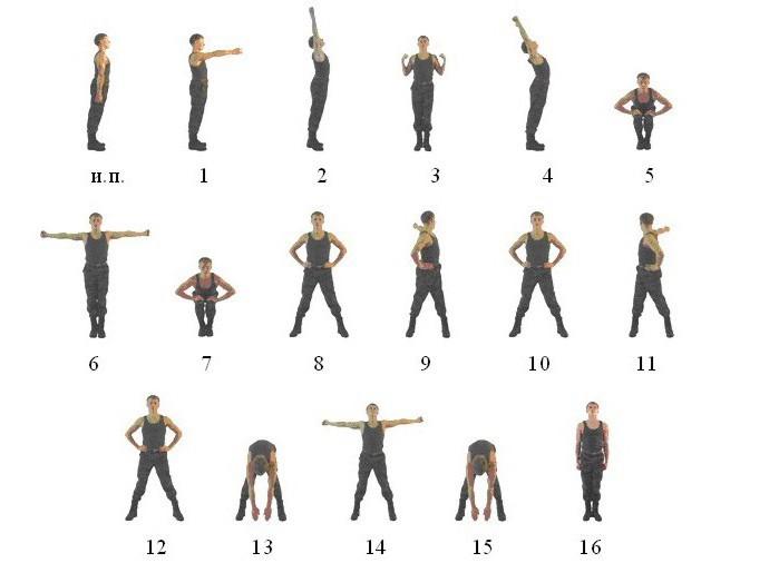комплекс вольных упражнений 1